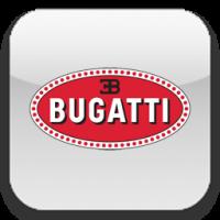 Каркасные шторки на Бугатти